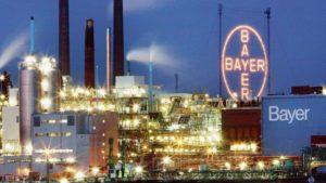 BAYER – Neutre